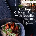 Gochujang Chicken Salad with Noodles and Tofu