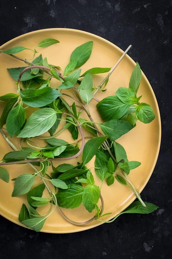 Thai Basil Herb