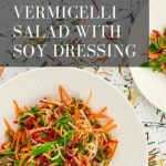 Rainbow Vermicelli Salad with Soy Dressing