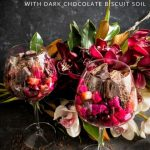 Red Fruit Salad with Dark Chocolate Biscuit Soil