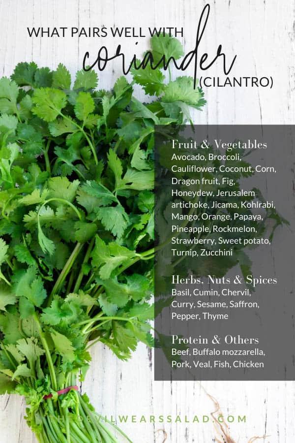 What Goes Well with Coriander