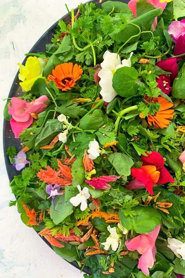 Herb Salad with Edible Flowers