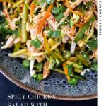 Spicy Chicken Salad with Spicy Vinegar Dressing