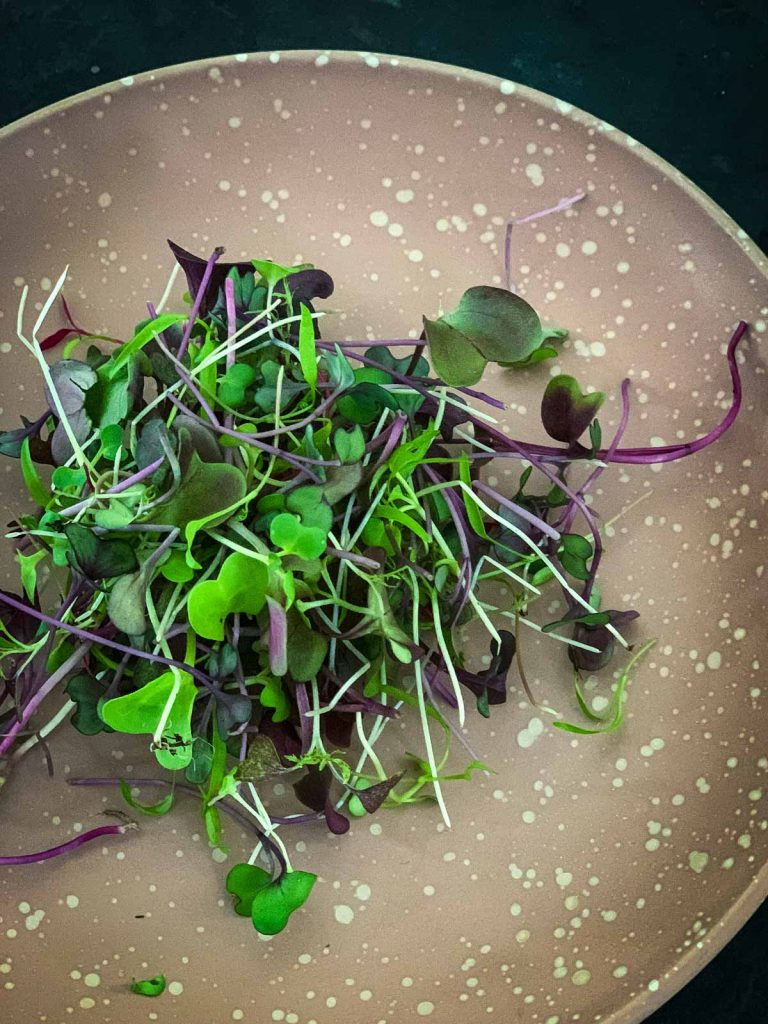 Micro salad or micro greens