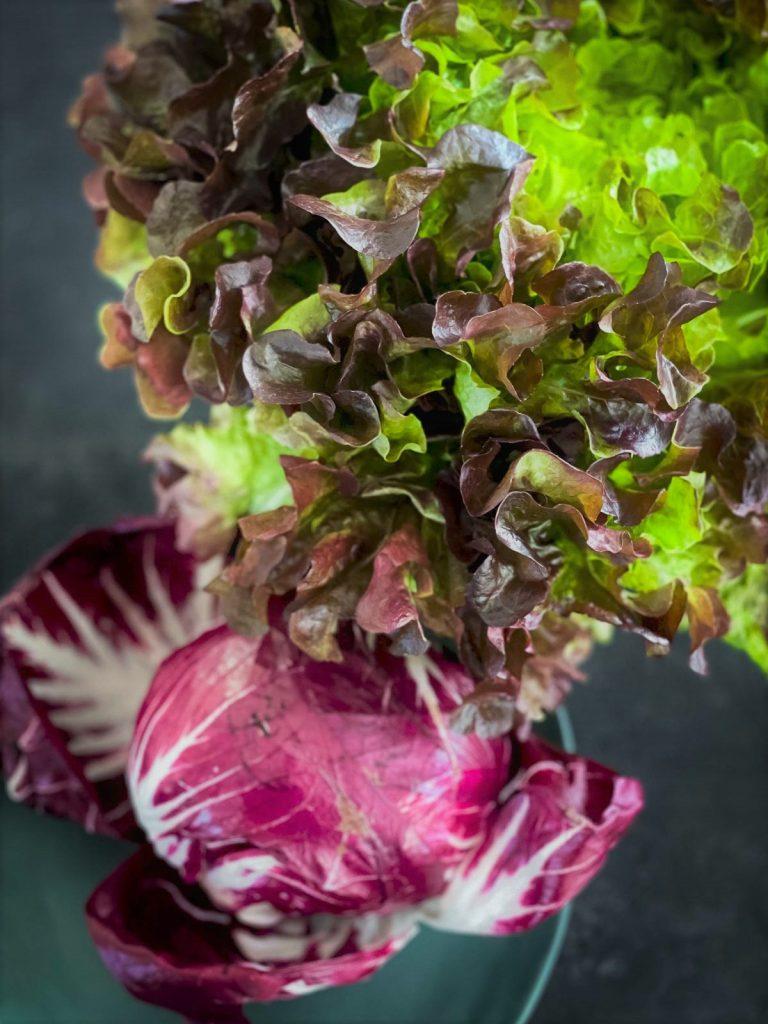 Radicchio and lettuce