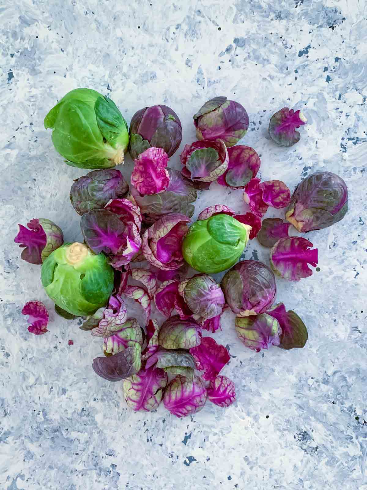 Green and purple Brussels sprouts
