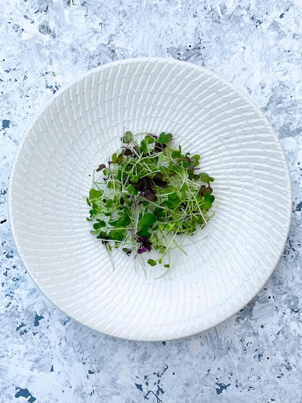 Microgreen salad mix