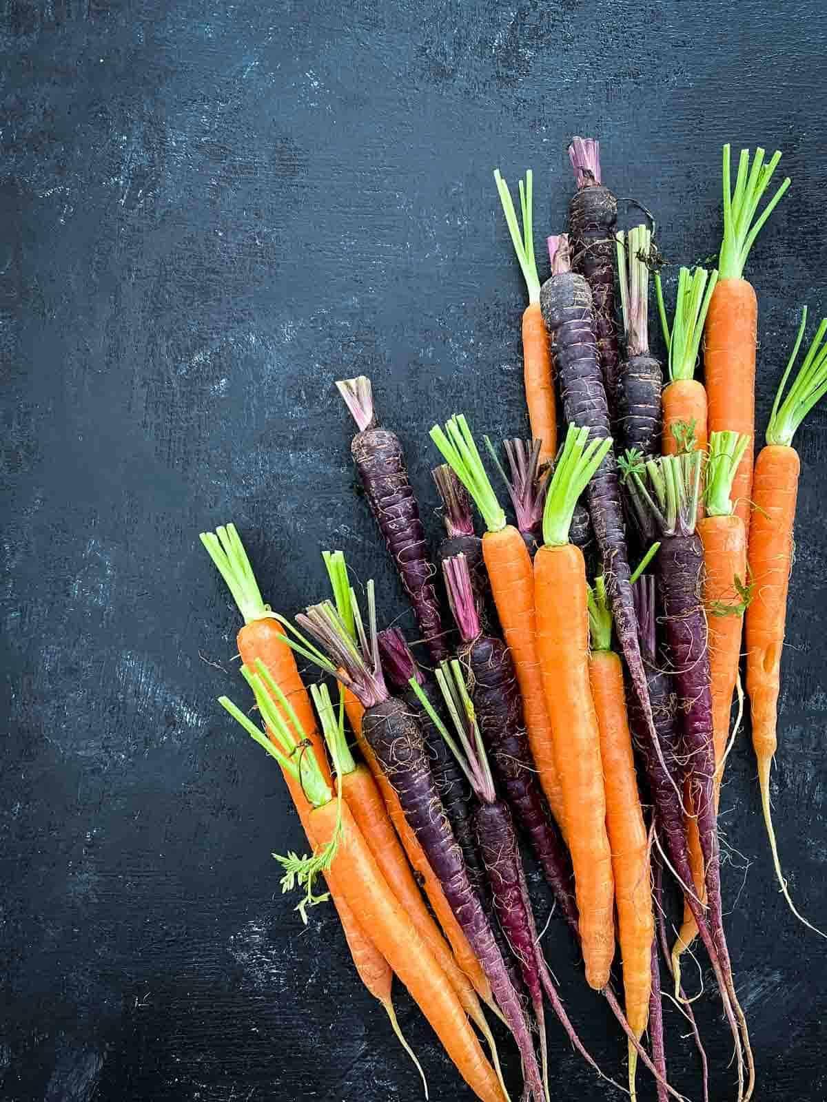 Purple and orange Dutch carrots